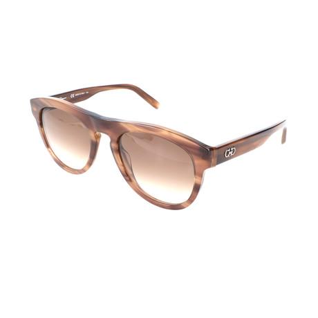 Unisex SF828S Sunglasses // Striped Brown