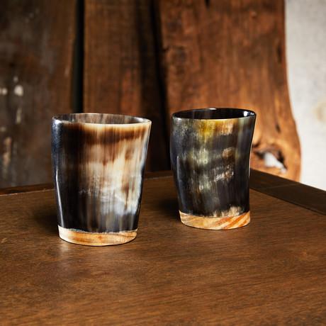 Set of 2 Horn Shot Glasses