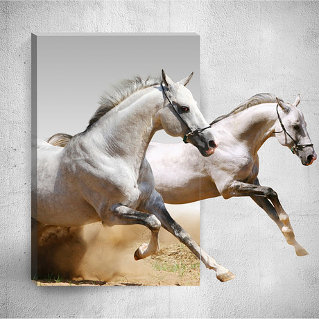 White Horses // Mostic 3D Wrapped Canvas + Decal