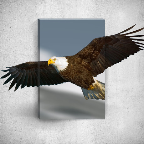 Eagle // Mostic 3D Wrapped Canvas + Decal