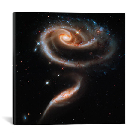 "A 'Rose' Made of Galaxies Highlights Hubble's 21st Anniversary (18""W x 18""H x 0.75""D)"
