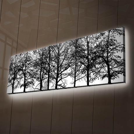 Tree Span
