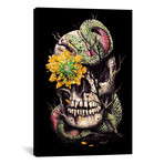 """Snake And Skull // Nicebleed (18"""" W x 26"""" H x 0.75"""" D)"""