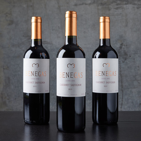 91 Point Argentinian Cabernet Sauvignon // 3 Bottles