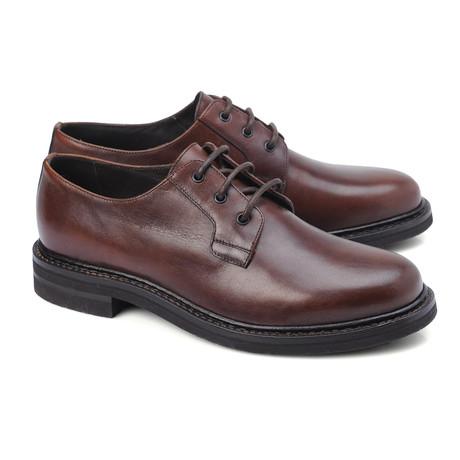 Trevisan Plain Toe Derby // Burgundy Brown
