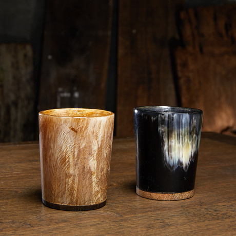 Set of 2 Horn Shot Glasses