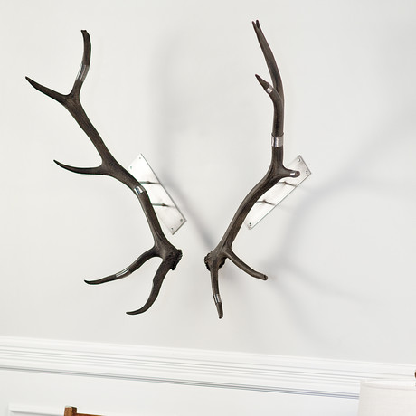 Large Elk Antler Wall Mount (Black + Silver)