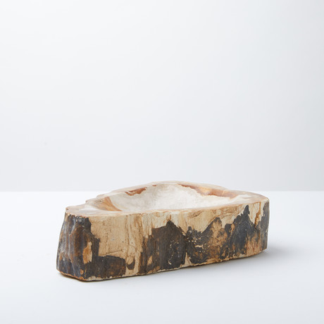Petrified Wood Decorative Bowl