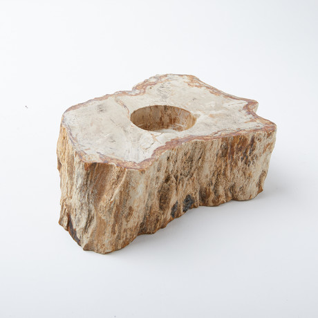 Petrified Wood Votive Candle Holder (Single)