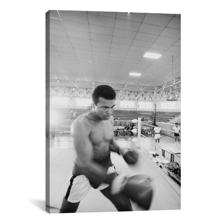 "Blurred Motion View Of Muhammad Ali Sparring (18""W x 26""H x 0.75""D)"