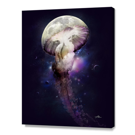 Cosmic Anomaly // Stretched Canvas