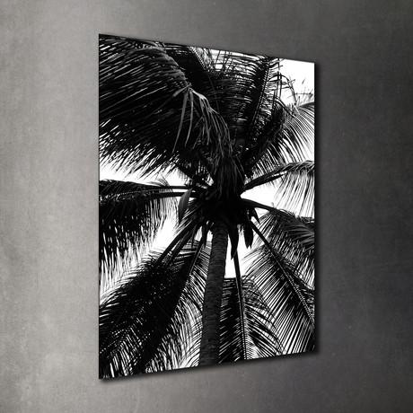Barbados Palm // Acrylic
