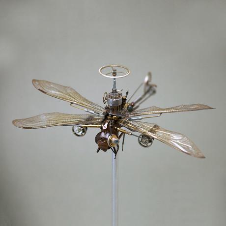 Odonata // Episheachna Heros
