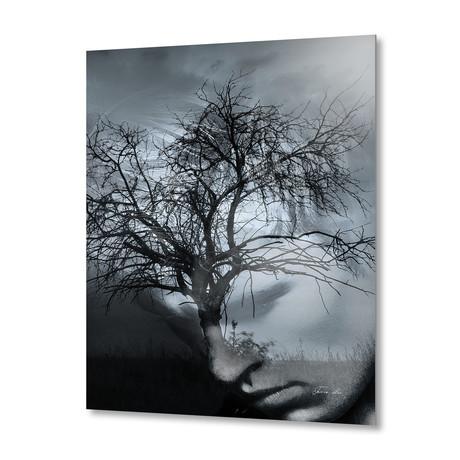 Tree // Aluminum Print