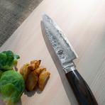 """Premier // Paring 4"""" Knife"""