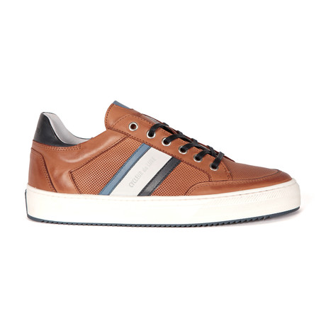 Burton // Cognac + Light Blue + Navy (Euro: 40)