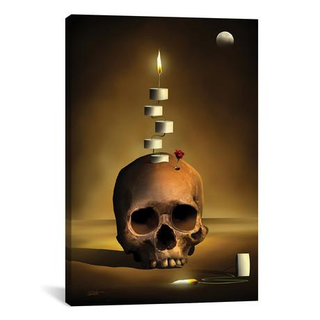 Caveira Composicao (Skull Composition)