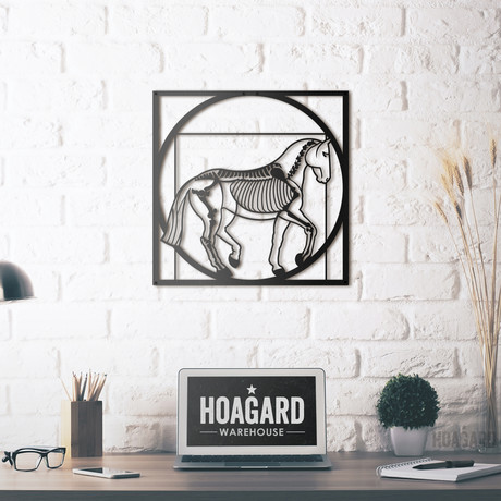 Vitruvian Horse