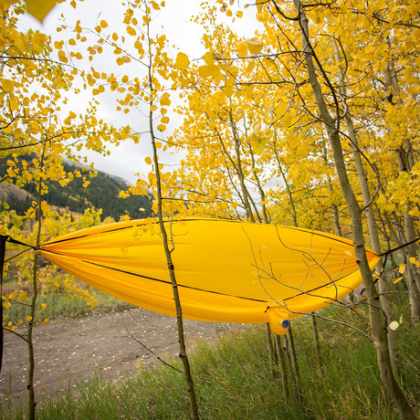 Freedom Hammock (Gold)
