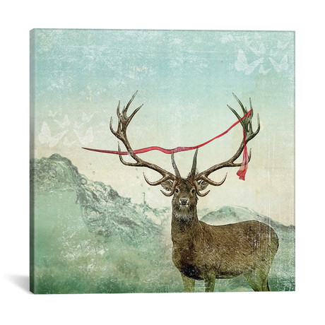 Deer Scarlet