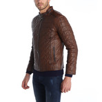 Flagstick II Leather Jacket // Brown (L)