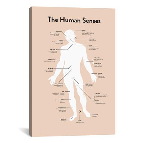 """Senses (26""""W x 18""""H x 0.75""""D)"""
