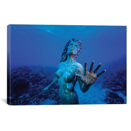 """Underwater Mermaid Statue At Grand Cayman Island // Jennifer Idol (18""""W x 12""""H x 0.75""""D)"""