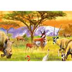 Safari Oasis