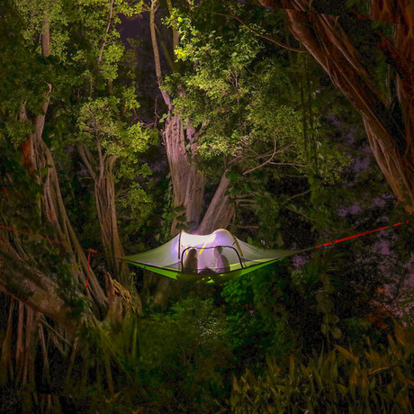 Stingray Tree Tent (Forest Green)