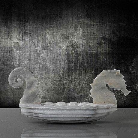Seahorse Ship