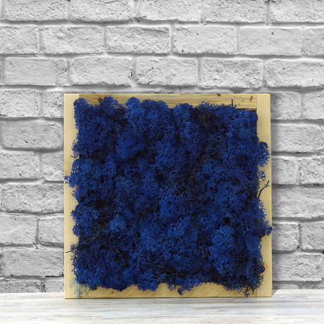 Wall Moss // Navy