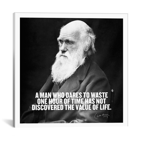 "Charles Darwin Quote // Unknown Artist (18""W x 18""H x 0.75""D)"