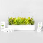 Smart Garden 9 (White)