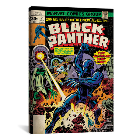 "Marvel Comics Retro // 1977-1979 #2 // Black Panther (26""W x 18""H x 0.75""D)"