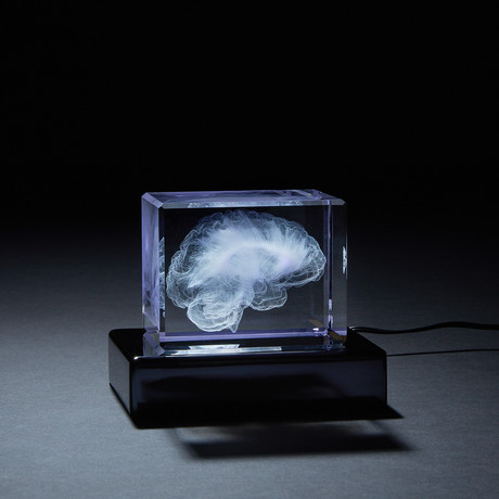 Brain Crystal (With LED Base)