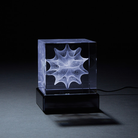 Calabi-Yau Crystal (With LED Base)
