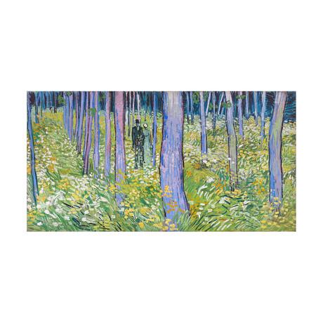 Forest Walk // 1888