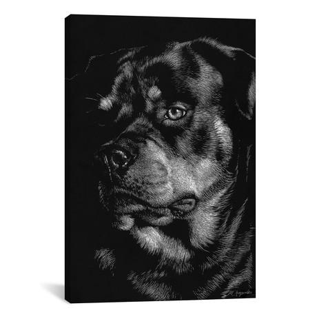 Canine Scratchboard XII // Julie T. Chapman