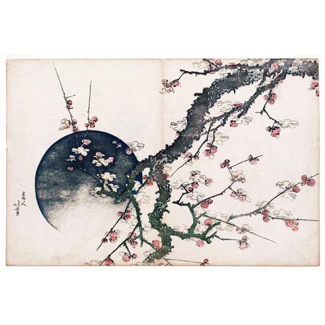 Plum Blossom And The Moon // Katsushika Hokusai