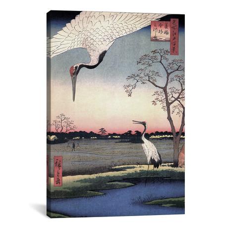 Minowa Kanasugi Mikawashima // Minowa, Kanasugi, Mikawashima // Utagawa Hiroshige