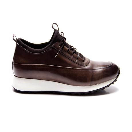 Rex Sneaker // Brown (Euro: 40)