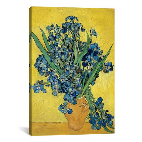 Irises, 1890 // Vincent van Gogh // II