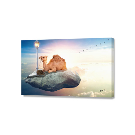 Kiwi And Camel Riding On A Rock In The Sky