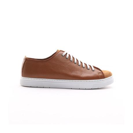 Phoenix Shoes // Taba