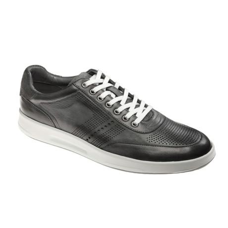 Nicolo Sneaker // Gray