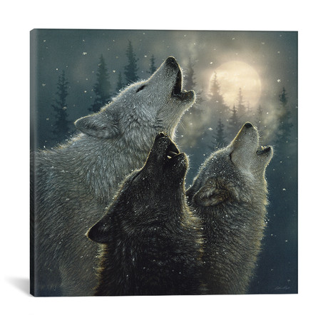 """Howling Wolves In Harmony, Square // Collin Bogle (18""""H x 18""""W x 0.75""""D)"""