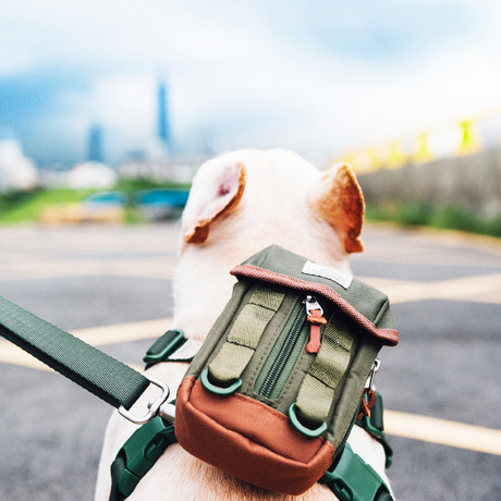 Dog Backpack // Harness + Belt Attachments
