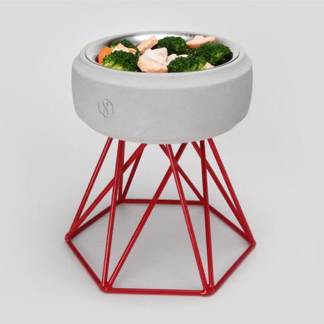 Concrete Modern Dog Bowl // Tall Red Base