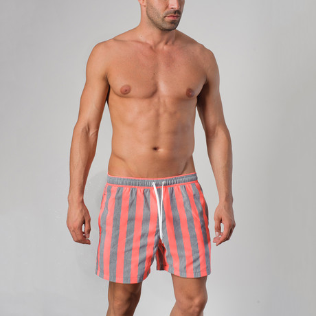 14021 Striped Swimming Shorts // Gray