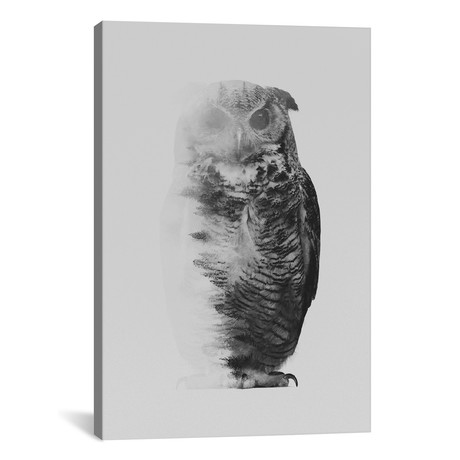 "The Owl I in B&W (18""W x 26""H x 0.75""D)"
